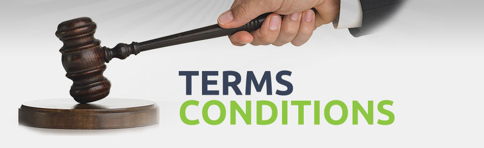 Terms & Conditions Everdata